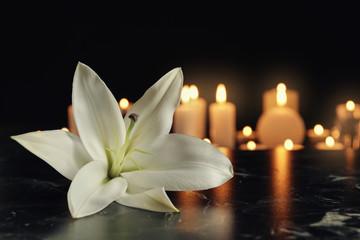 Fleurs de Bach pour le deuil